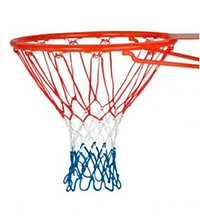 Basketball-Ring-Promotion.JPG